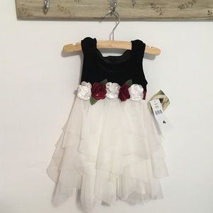 Biscotti Velvet Floral Tulle Toddler Holiday Dress